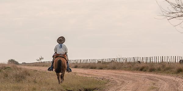 paardrijden esteros del ibera argentinie