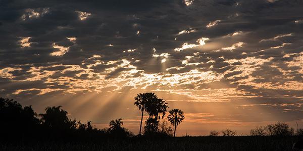 sunset ibera argentinie