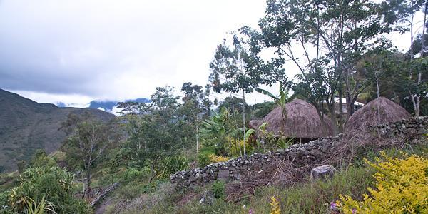 traditioneel dorp papua><br>De roundhouses van Kilisi</p><p class=