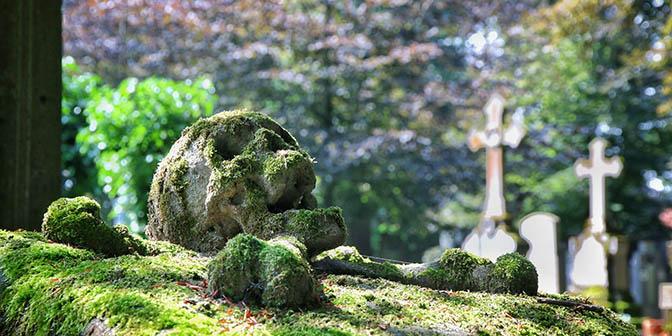 cemetery skull oud graf