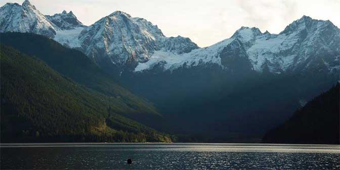 bergen canada