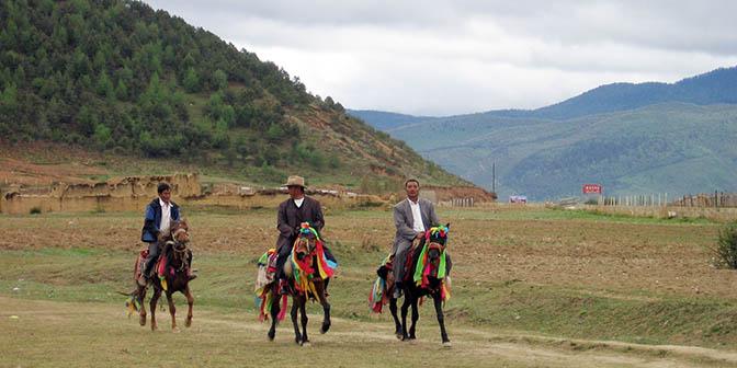 paardenraces zhongdian