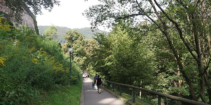 wandelen heidelberg