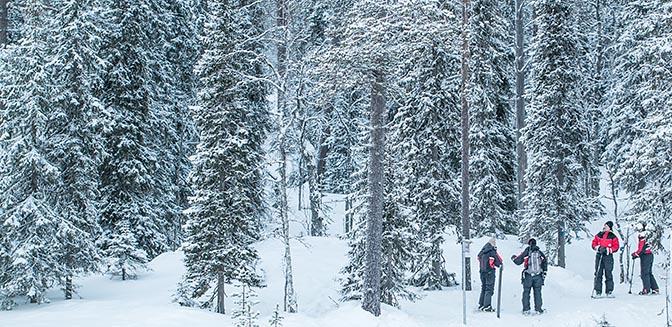 wintersport lapland sneeuwschoen wandelen