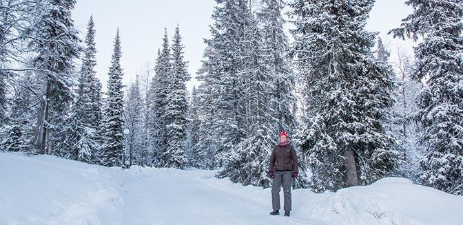 sneeuw lapland wintersport