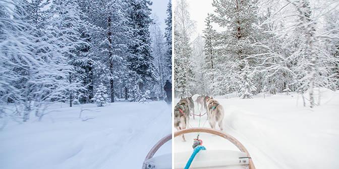 witbalans sneeuw