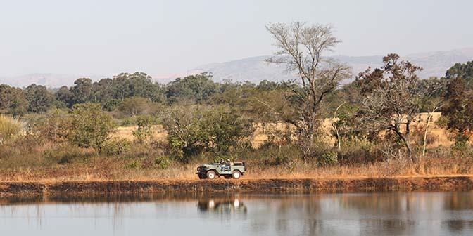 fotografie safari afrika