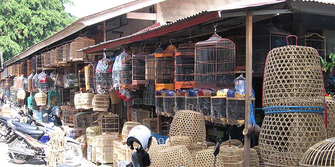 vogelmarkt denpasar