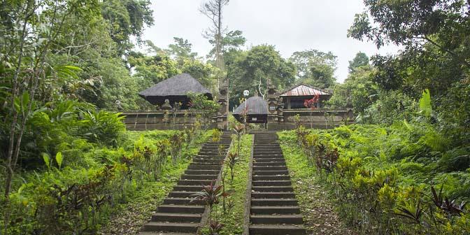 batukaru tempel bali