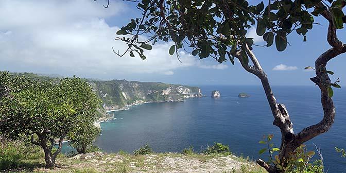 seren cliff penida
