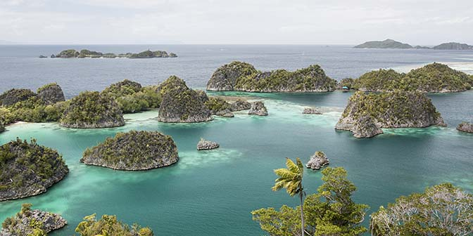 duiken raja ampat papua