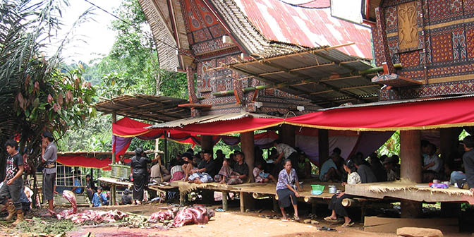 torajaland rondreis indonesie
