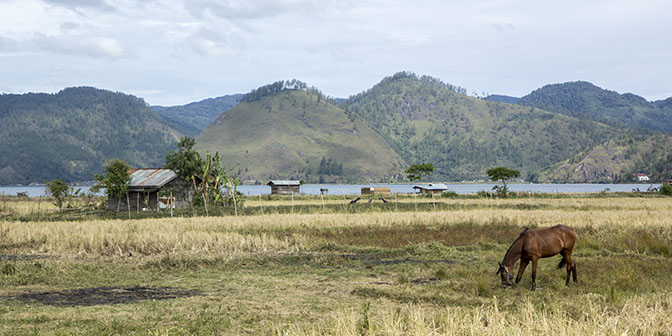 takengon sumatra