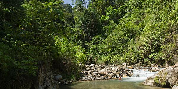 rivier gunung leuser sumatra