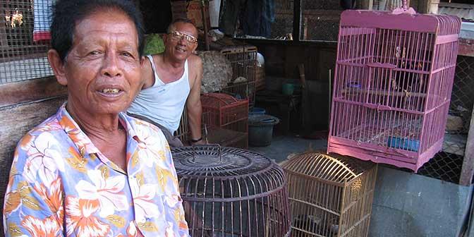 vogeltjesmarkt yogyakarta java