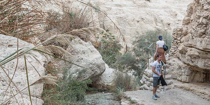 wandelen ein gedi israel