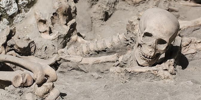 skelet herculaneum