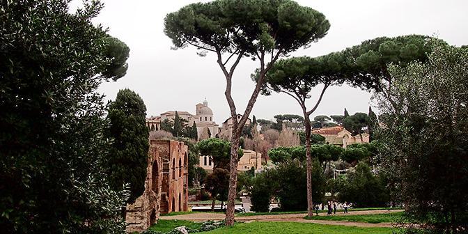 palatino colosseum rome