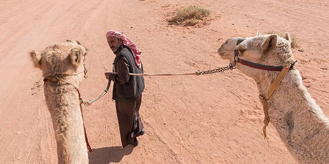 rijden kameel wadi rum