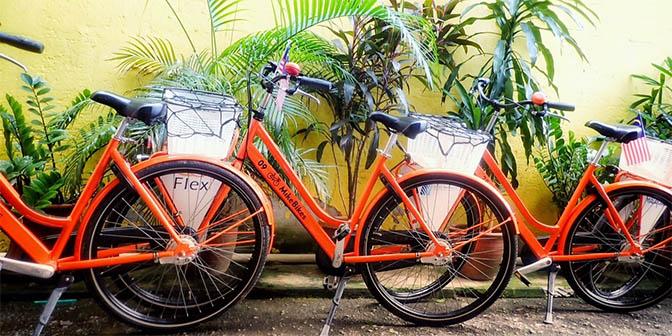 mike bikes fietsen