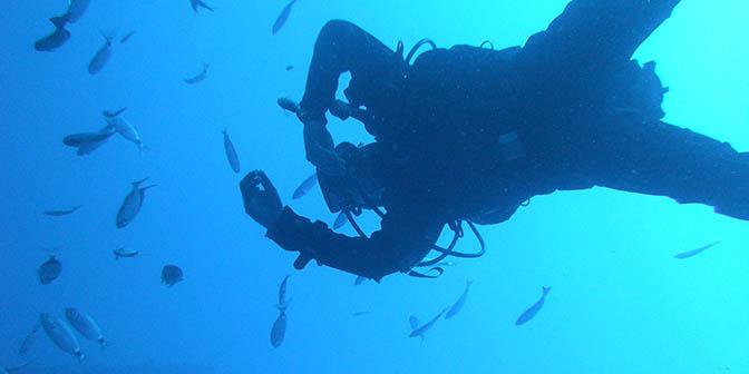 duiken in malta tussen de vissen