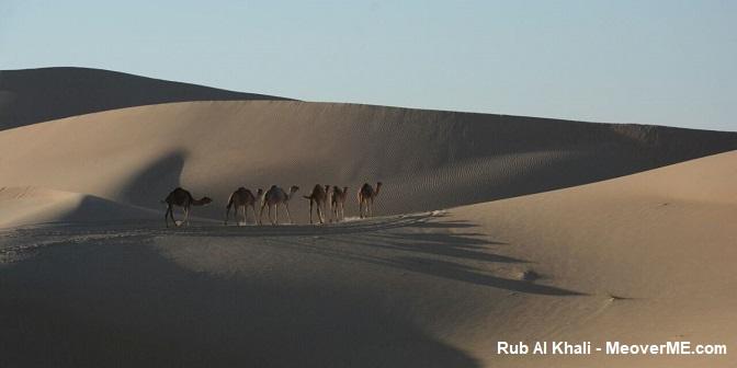 woestijn vae