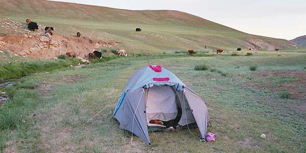 kamperen gobiwoestijn mongolie