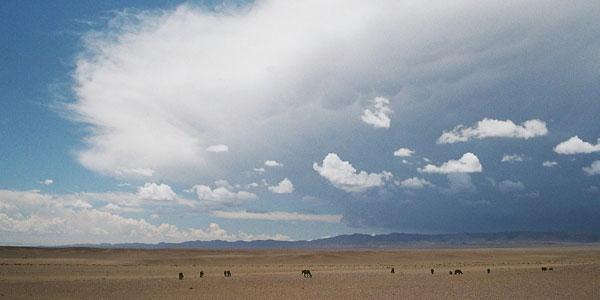mongolie woestijn