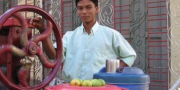 myanmar suikerriet