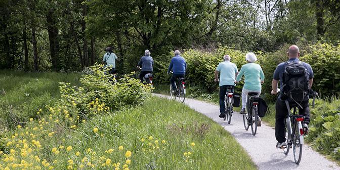 fietsen de alde faenen