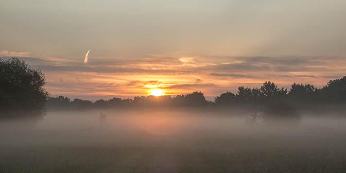 zonsopkomst amelisweerd