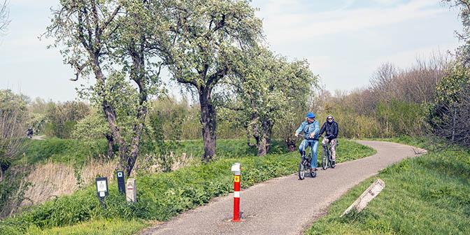 fietsen betuwe
