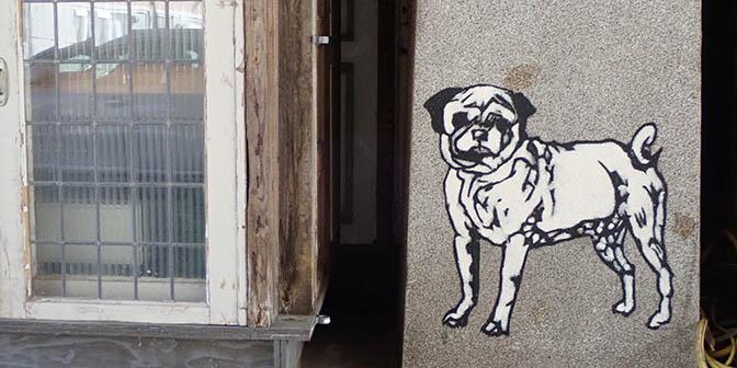 stickerart hond eindhoven