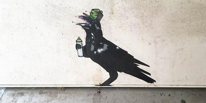 street art kraai
