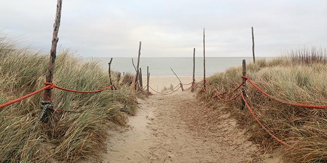 texel strand en duinen