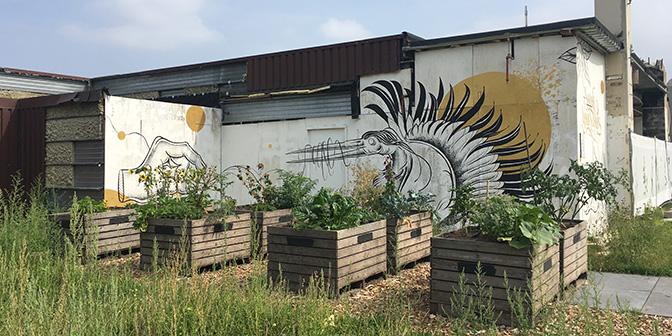 murals graffiti heerlen stadspark