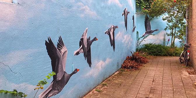 ganzen street art gansstraat