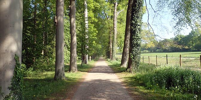bossen amelisweerd