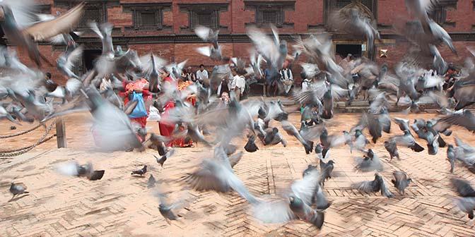 koningsstad patan nepal