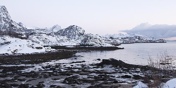 landschap Lofoten winter