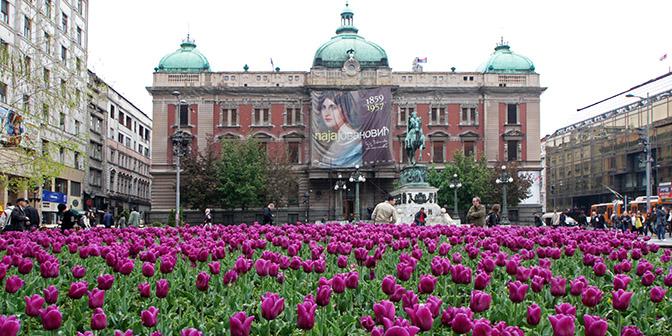 centrum belgrado stedentrip servie