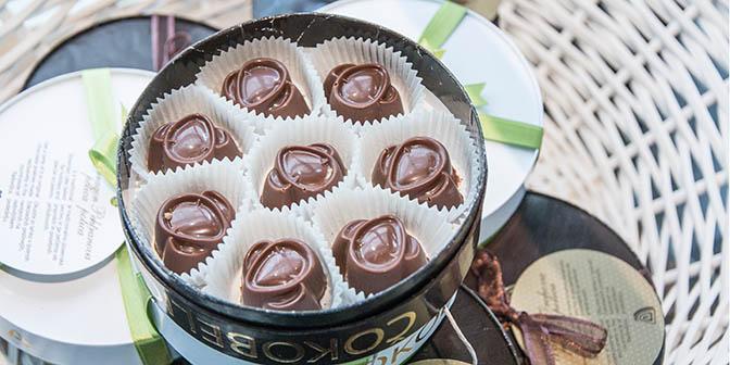 radovlica chocolae