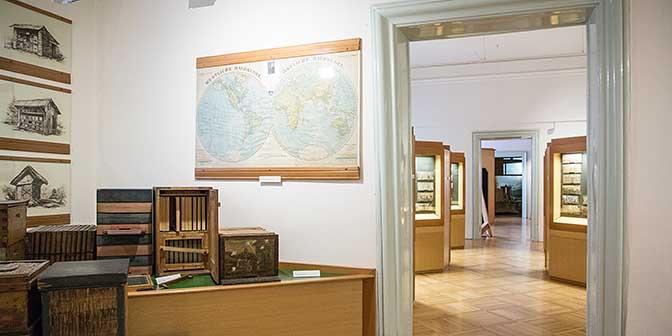 bijenmuseum radovljica