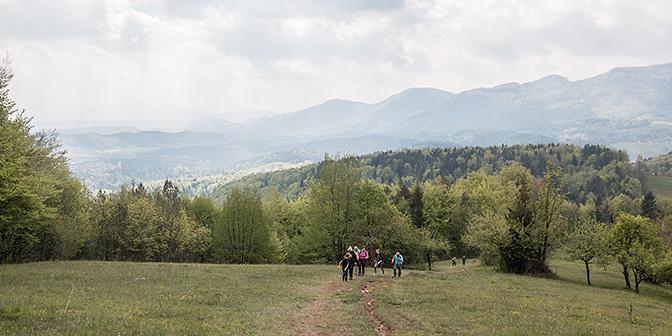 natuur slovenie
