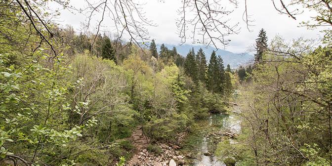 vintgar bergen slovenie
