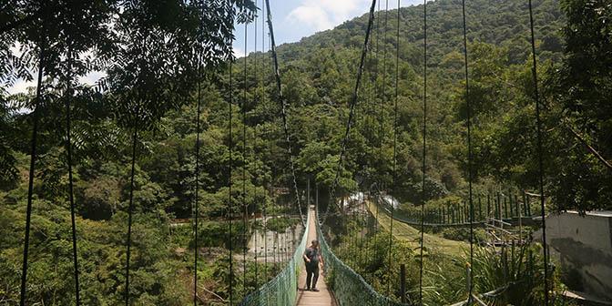 wasami trail yuli