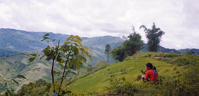 bergvolkeren noord thailand