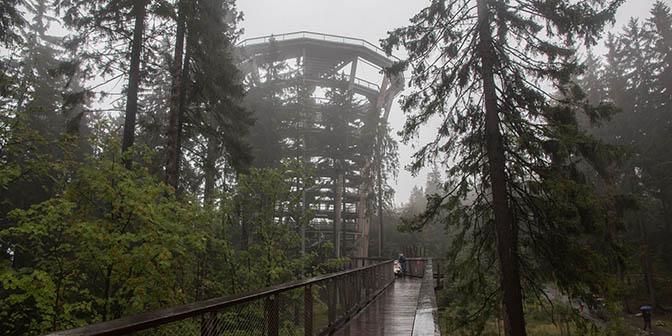 krkonose canopy walk