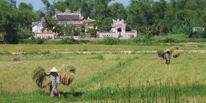 platteland vietnam
