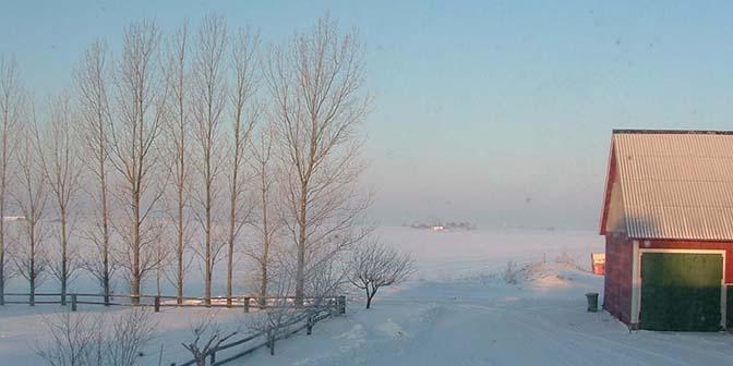 sneeuw zweden winter